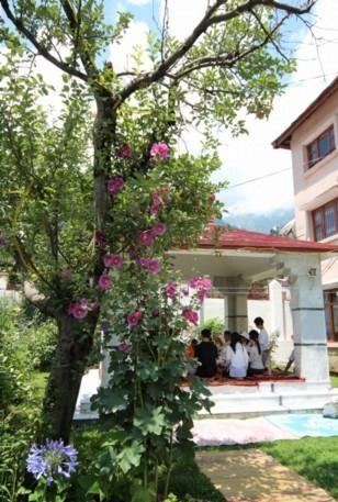 北インド ヒマラヤ山麓 13