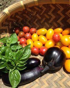 farm4、トマト、バジル、ナス